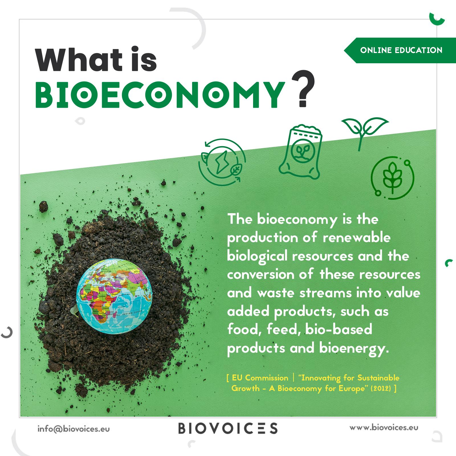 What is bioeconomy?