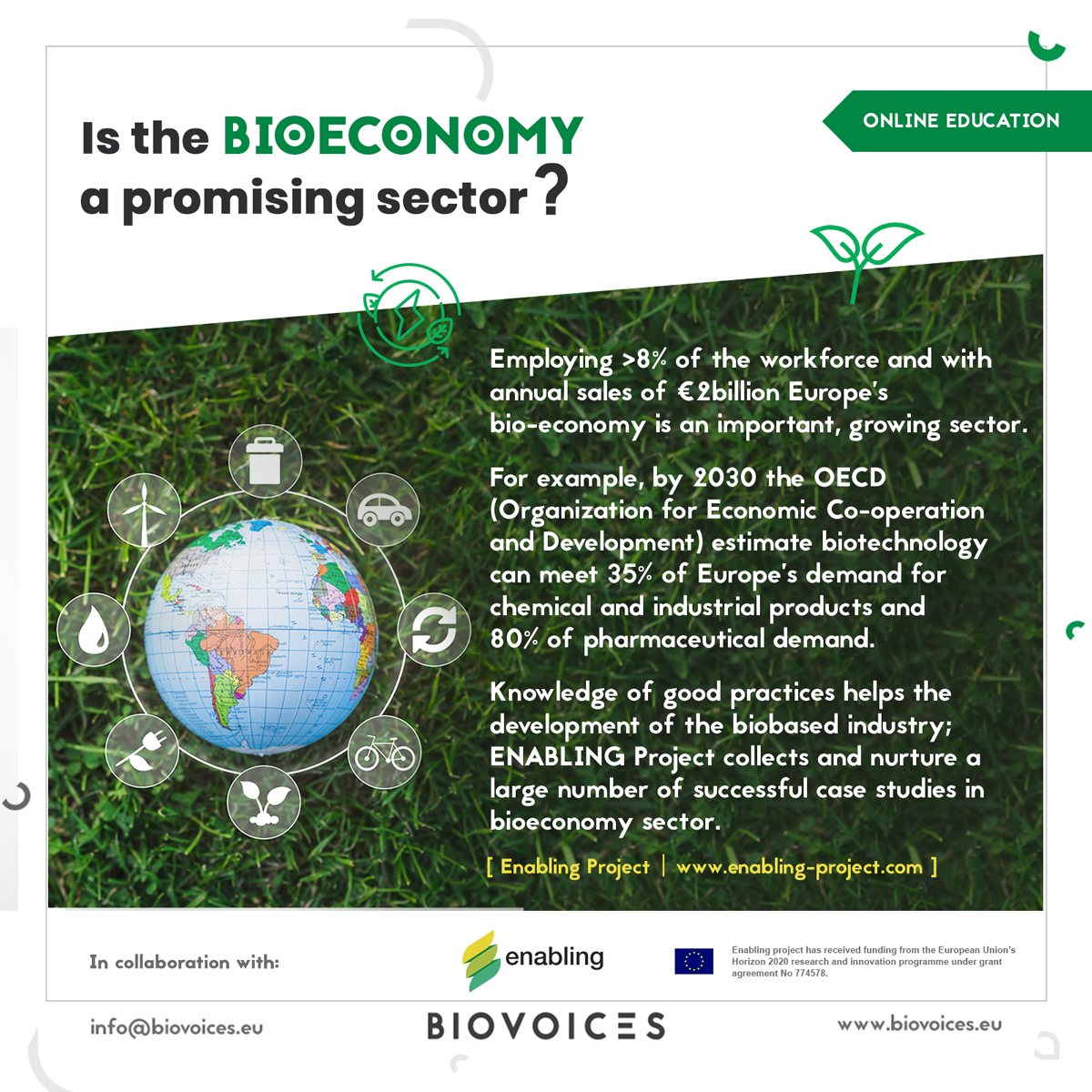 Is the bioeconomy a promising sector?