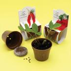 Eco-friendly jars from straw